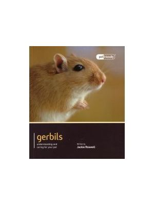 Gerbil Pet Friendly