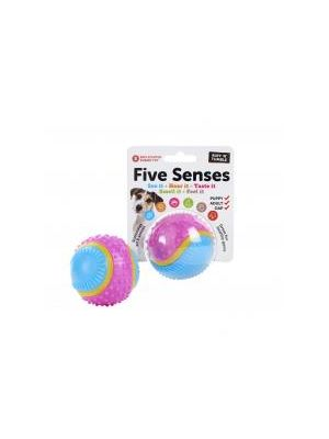 Five Senses Sensory Ball