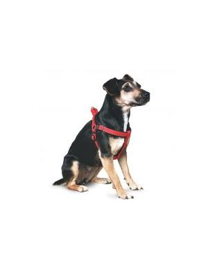 Ancol Padded Harness 7-8 Red