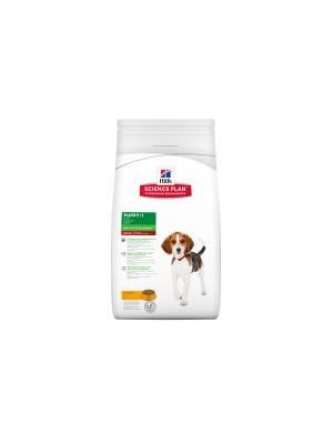 Hills Science Plan Puppy Healthy Development Medium with Chicken