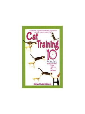 Cat Training In 10mins