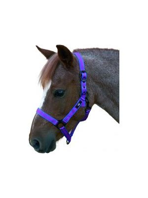 Hy Duo Head Collar - Navy/Red - Pony