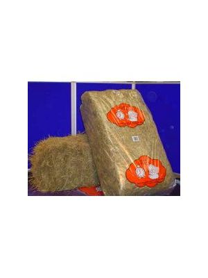 Animal Dreams Hay Bale