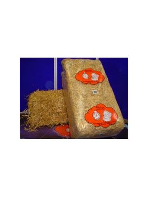 Animal Dreams Straw Bale