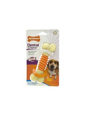 Nylabone Pro-Action Dental - Medium
